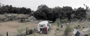 Zorthian Ranch, 2010